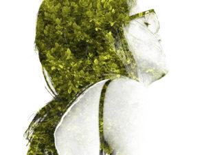 La Marita, Doble Expo Ilustración
